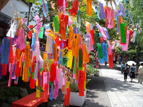 織姫と彦星の出会いを演出しよう。ライトダウンジャパン2012