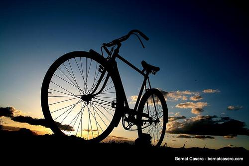 「自転車ナンバープレート装着義務化」、賛成?反対?
