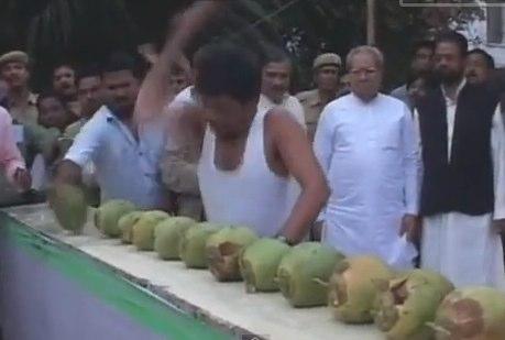 【動画】頭でココナッツを1分に18個割った男はひじだと1分に85個割れる