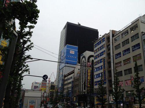 akihabara510