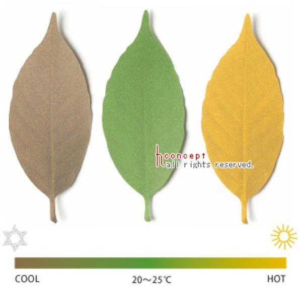 色で感じる温度計