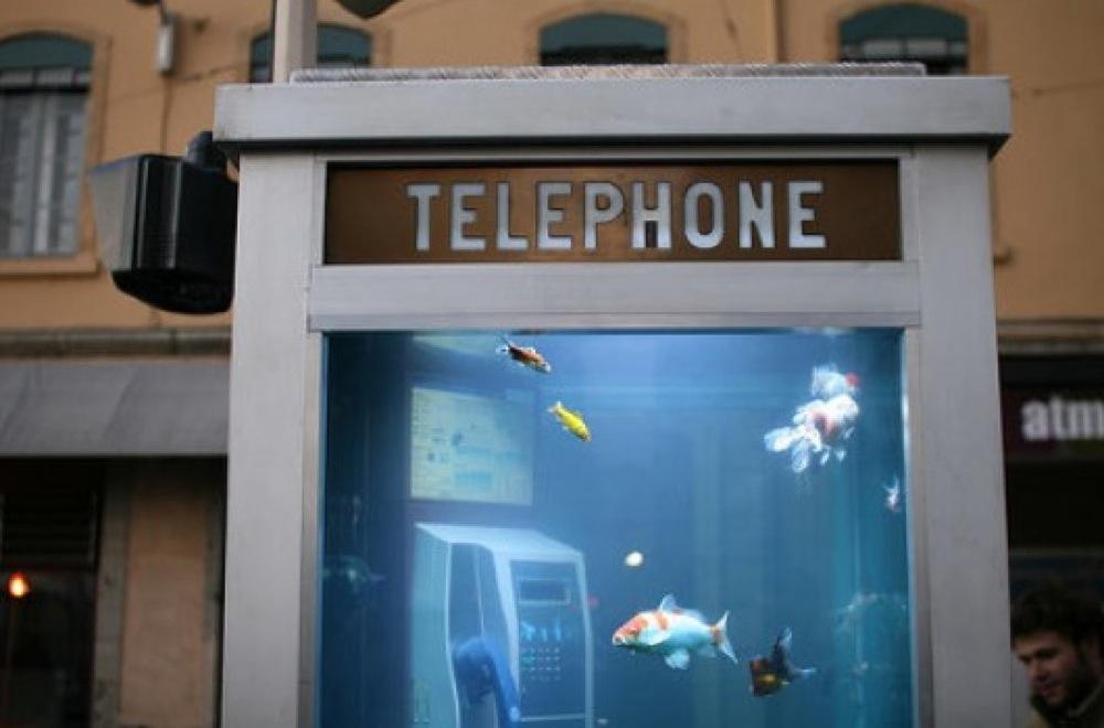 電話ボックス水族館