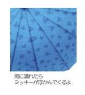 ミッキーの傘